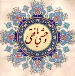 زندگينامه وحشــي بافقـــي, مولانا شمس الدين محمد وحشي بافقي